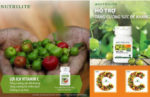 5 Lý do bạn nên mua nutrilite bio c plus tại Cungmua123.com (1)